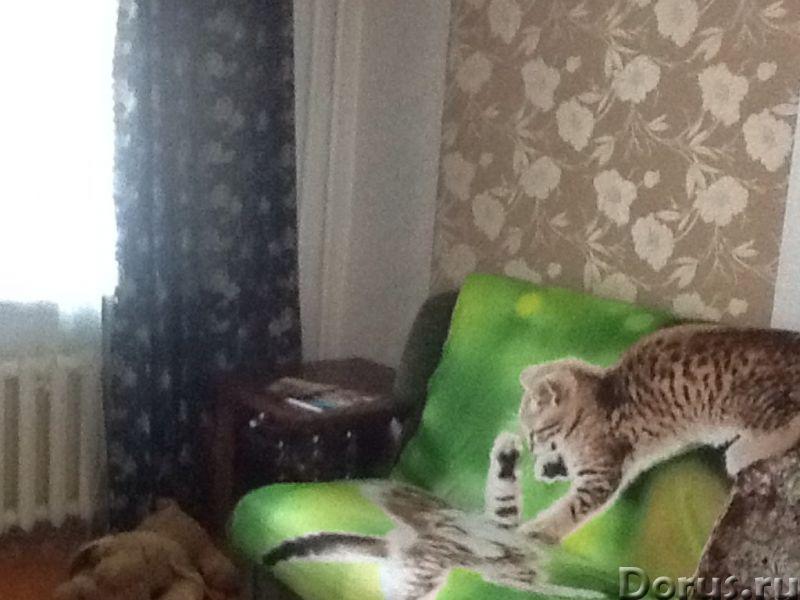 Сдам посуточно 2-х комнатную квартиру в центре Хабаровска - Аренда квартир - Сдам посуточно 2-х комн..., фото 2
