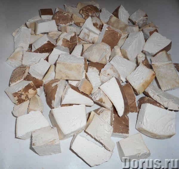 Трутовик берёзовый - Услуги народной медицины - Предлагаем купить трутовик березовый по цене 350 руб..., фото 3