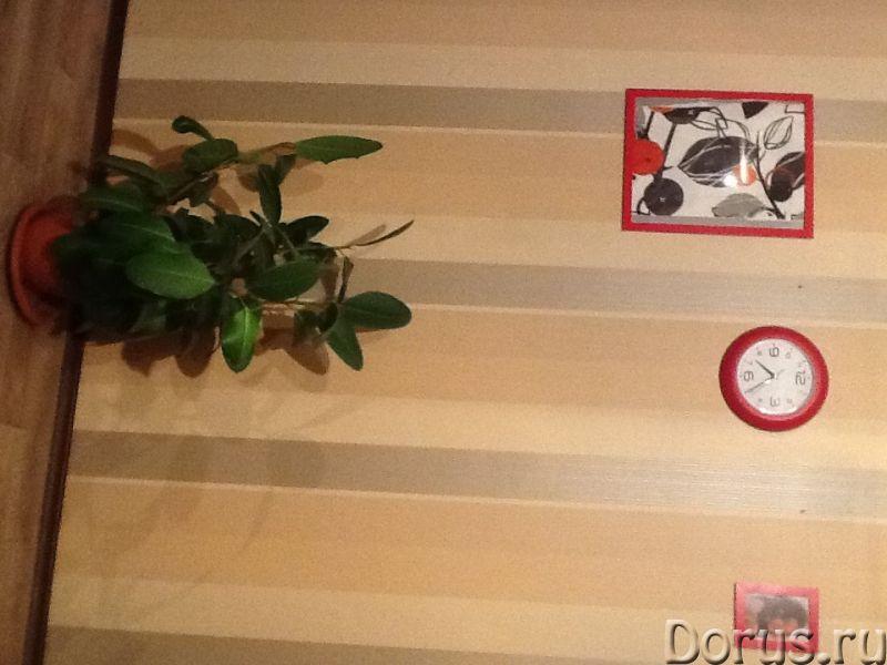 Сдам посуточно 2-х комнатную квартиру в центре Хабаровска Ул. Муравьева Амурского 25 - Аренда кварти..., фото 2